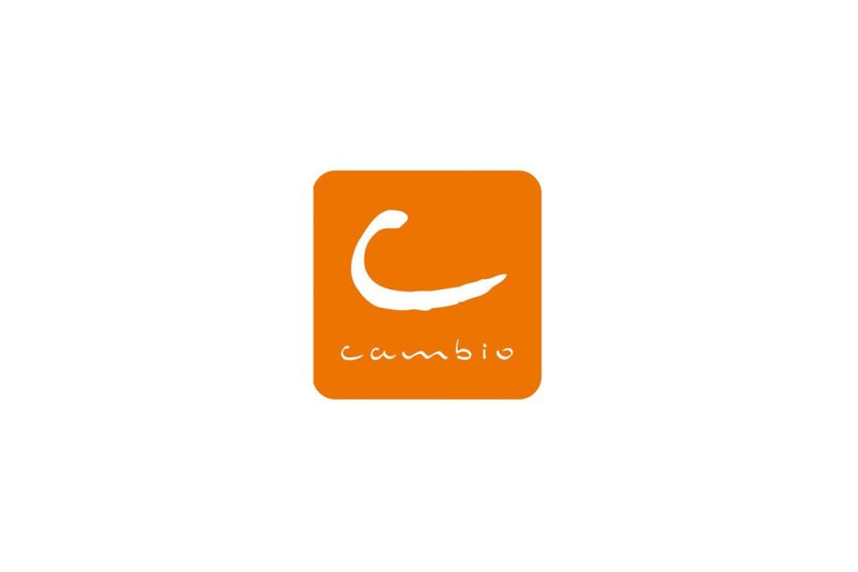 Réalisation d'une banque d'images pour la société de location de voiture Cambio